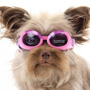 Dog-doggles-Pet-protection-ils-lilac-frame-with-flowers-lilac-lens-Leviapool